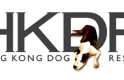 Rescuing and rehoming abandoned dogs in Hong Kong