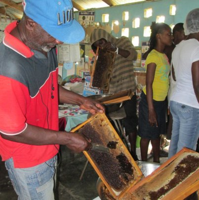 Build a Honey Room for 40 Bee Farmers in Jamaica