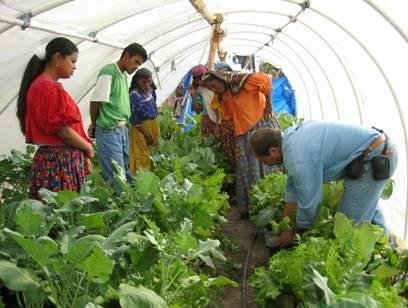Int'l Teacher Training on Agriculture - Mexico