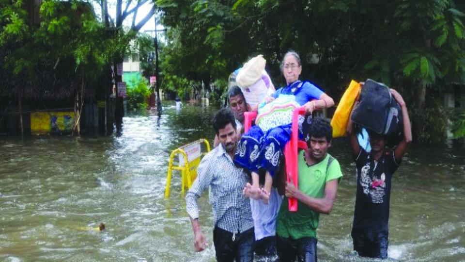 Urgent rebuilding - 2500 Chennai flood survivors