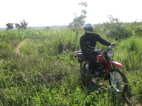 A health worker on the road