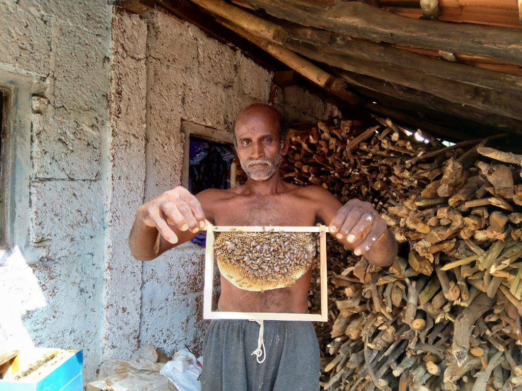 Beekeeping Training to Locals