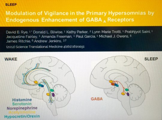 GABA and primary hypersomnia