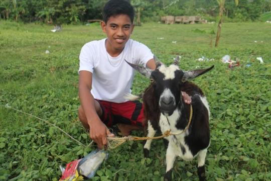 Dispersed goat