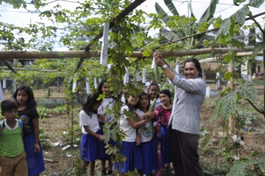 School garden at Kasambuhan Elementary