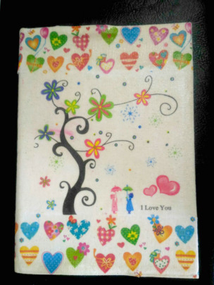 Handmade book of life for baby by birth mother