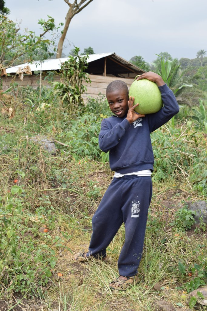 Community Garden for Health and Income Generation