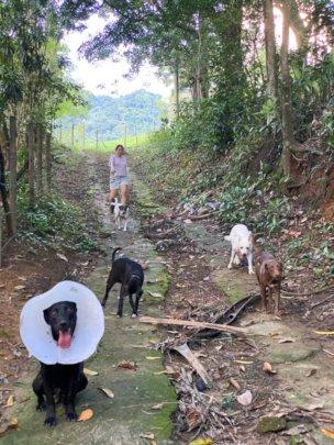Pretinho and his friends talking a walk!