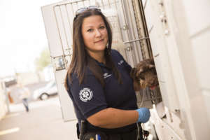 Emergency Animal Medical Technicians (EAMTs)