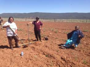 The People's Farm Orchard Planting
