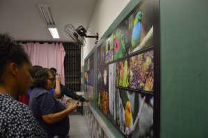 Exhibition Room/Sala de Exposicao