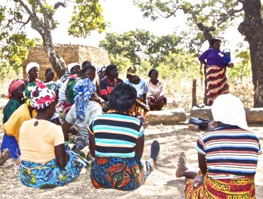 COMACO Farm Talk Farmer Cooperative