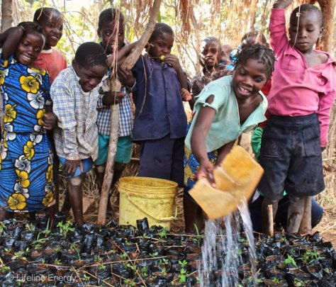 Growing vegetables in Zambia