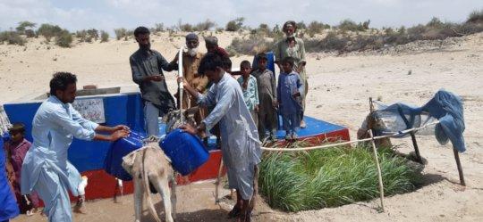transportation of water on donkeys back.