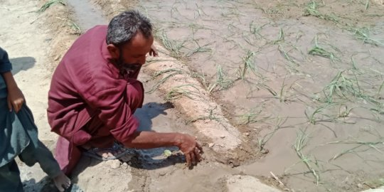 Cultivation of the Land with water from the Well