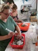 Interns feeding the babies