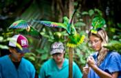 Saving Belize's Birds