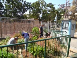 Garden Activity with Volunteers