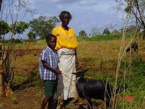 Strengthening our Congo Community with a Goat Bank