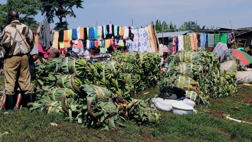 Selling Boygoyas at the Market