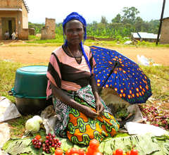 WMI Borrower selling produce