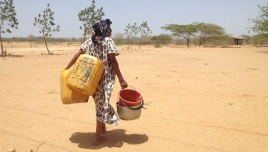 Feed 300 Wayuu in drought-stricken Guajira
