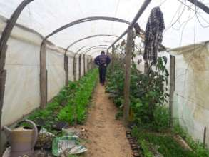 Greenhouse Tunnel to Be Re-built