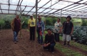 Support Organic Seed Savers in the Philippines