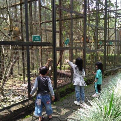 Zoo sightseeing