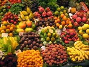 Promote Food Security Among 10,000 Homes in Uganda