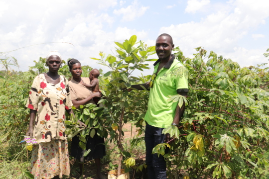 NSP staff with farmers and trees planted