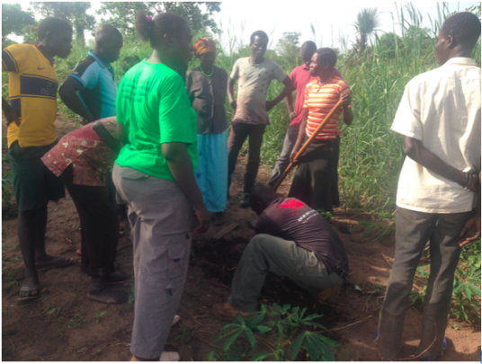 Planting native tree seedlings with local farmers