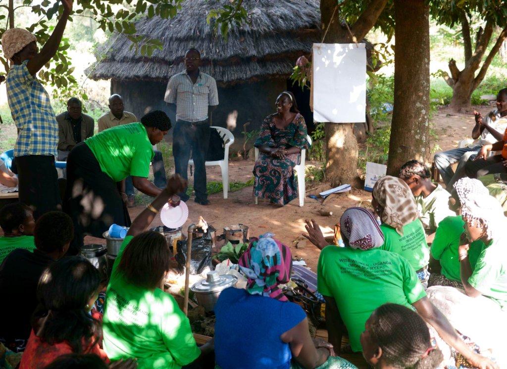 Reforest native trees, empower women healers