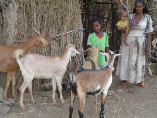 Beneficiary with her new goats