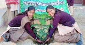 Save Tree ~ Save Earth ~ Save Life !!