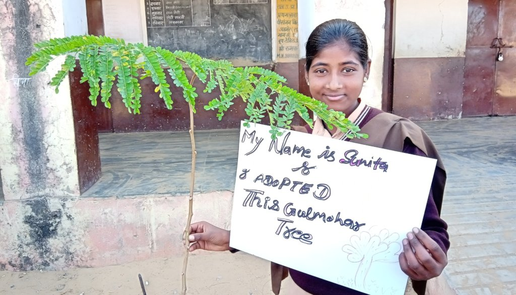 Save Tree ~ Save Earth ~ Save Life !!