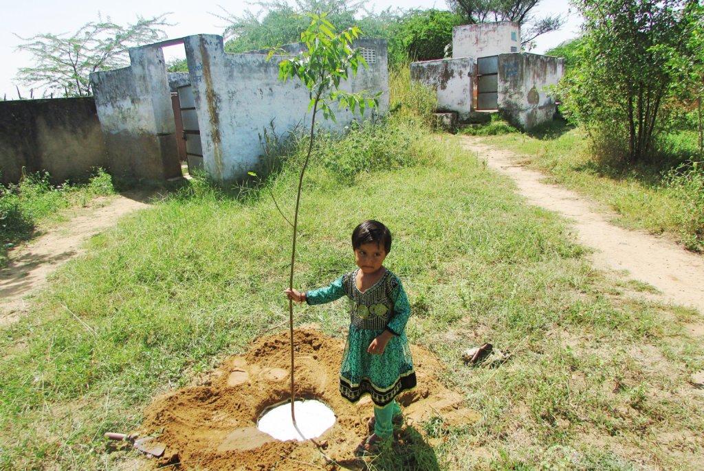 Adopt a Tree; Tree Plant with School Kids!!
