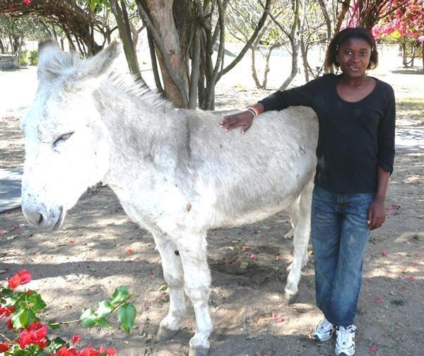 Sibongile and our blind donkey
