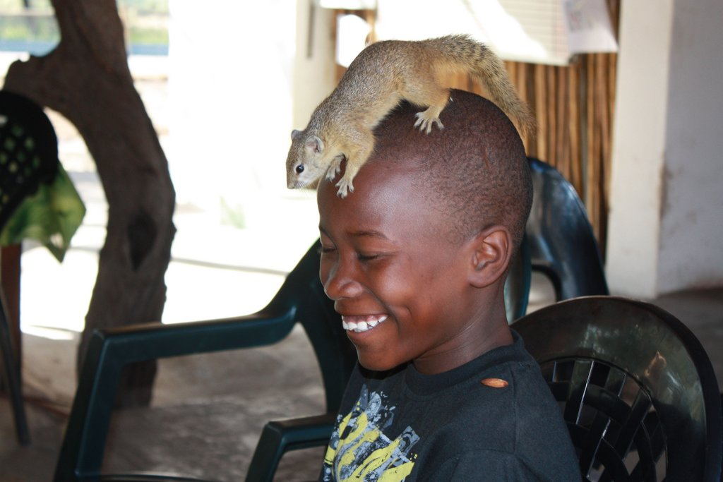 Themba was doing his maths work, when a cheeky squirrel decided that he looked like the kind of boy that might have some food, and jumped onto his head! The villages no longer have many trees and he had never seen a squirrel before, the impact on him was great and he was thrilled by the experience.