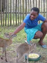 Cecilia loving orphaned baby duikers