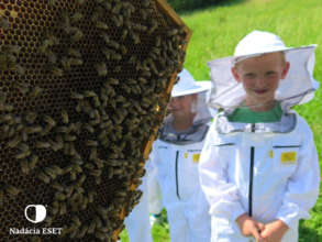 Schools visiting the educational apiary