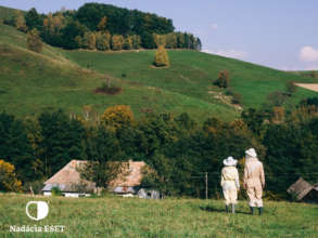 Help save bees and beekeeping in Slovakia