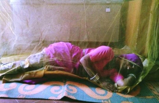 Sweet sleepiness in mosquito net
