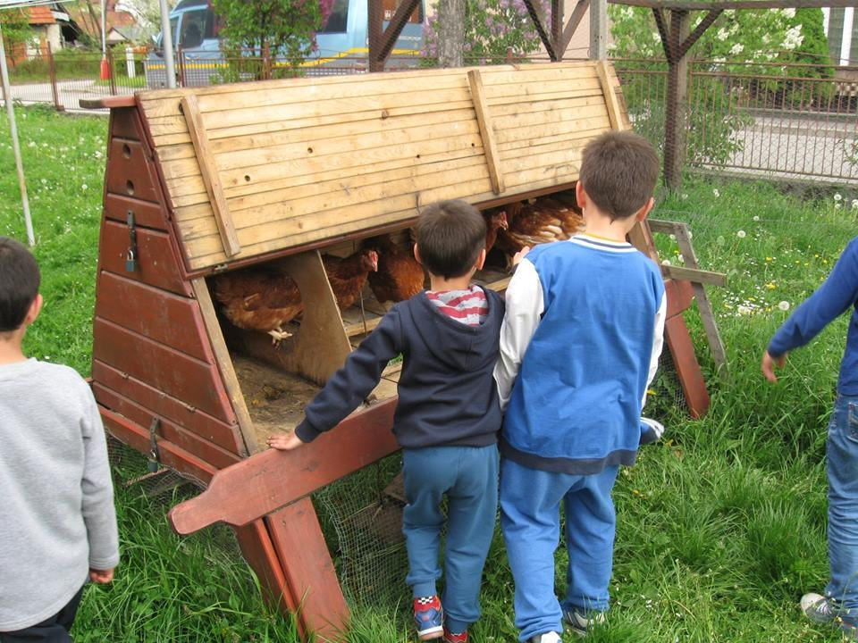 Hens and Seeds for 25 Needy Families in Slovakia