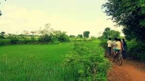 NEEV CIL Members Taking a Walk Amidst the Fields