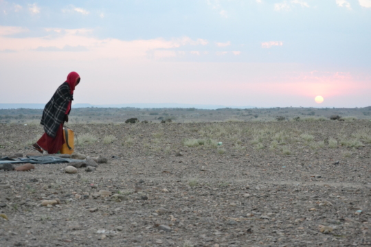 The Afar region is most infected by drougth