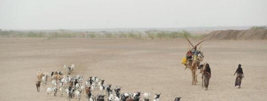 Ethiopia Krackhardt/DiakonieKatastrophenhilfe