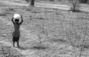 India Heat Wave - Relief for the Suffering