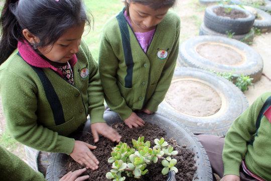 Third Grade Girls Planting Jade