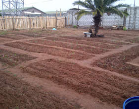 The vegetable garden completed